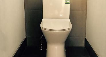 toilet-plumbing