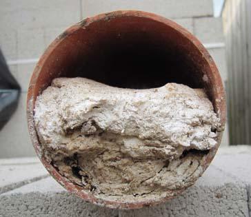 drain cleaning in brisbane