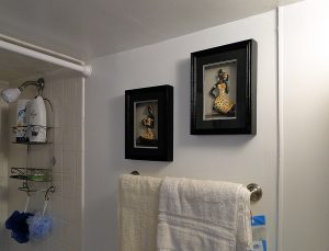 Bathroom Shower Storage